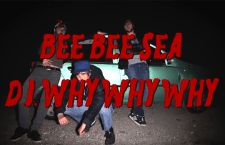"Watch: Bee Bee Sea ""D.I. Why Why Why"""