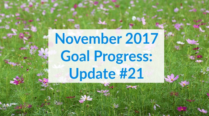 November 2017 Goal Progress: Update #21