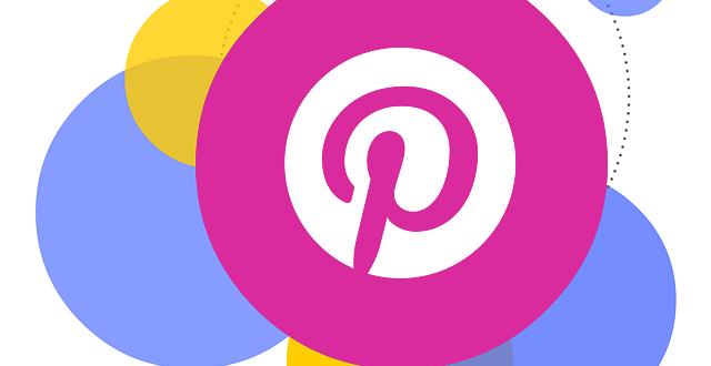 Live in Belgium Pinterest Feed