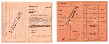Orange Card Belgium for Legal Cohabitation Visa