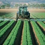 Agricoltura, 3 mila euro a giovani e donne imprenditrici