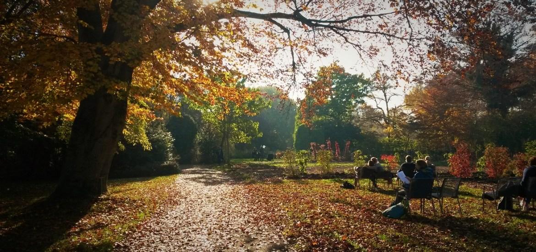 Der Münchner Rosengarten - Unser Lieblingsplatz mitten in Untergiesing