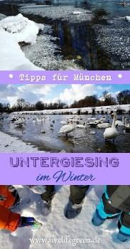 Pinterest-Pin: München Tipps Winterzauber in Untergiesing