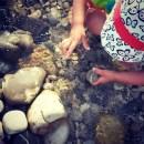 Sommer in Untergiesing Isar Wasserspiele