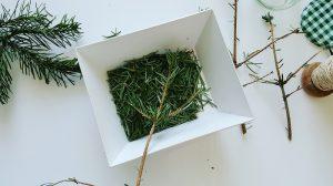 Weihnachtsbaum upcycling Erkältungsbad Tannennadeln sorgfältig entfernen
