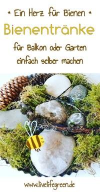 Pinterest-Pin: DIY-Bienentränke für Balkon und Garten