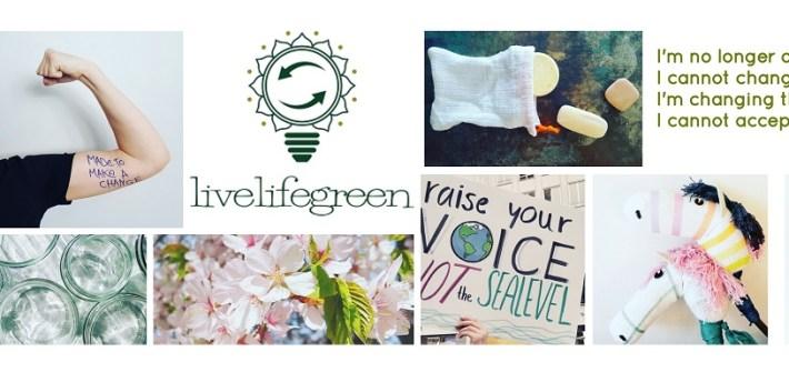 Nachhaltigkeitsblog livelifegreen Tipps und Ideen für ein nachhaltiges Leben, mehr Klimaschutz und Zero Waste im Alltag