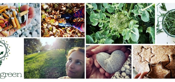 Nachhaltigkeitsblog livelifegreen auf facebook, twitter, instagram und pinterest