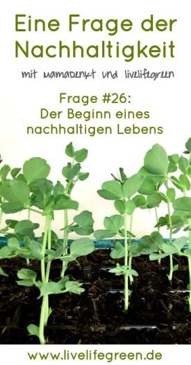 Eine Frage der Nachhaltigkeit: Wie pflanzt man den grünen Samen für ein umweltbewusstes Leben?