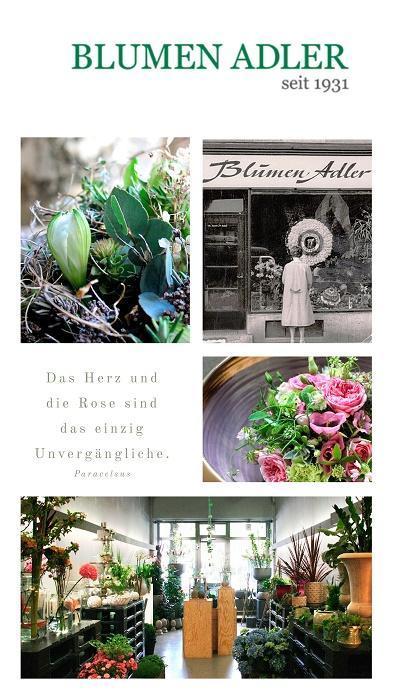 Nachhaltige Blumenläden in München: Blumen Adler