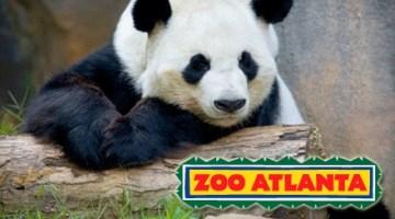 free general admission atlanta zoo