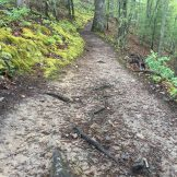 trail on the AT