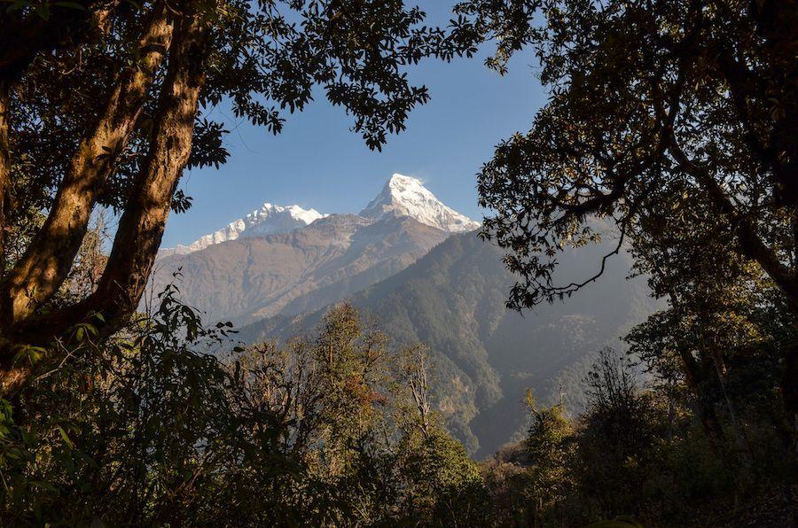 Poon Hill Hike Nepal