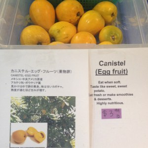 Egg_Fruit_2