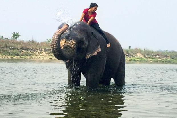 Shobha Narayan in Nepal's Chitwan National Park. Photo: Arpita Dutta