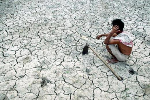 A widespread drought and rising indebtedness led to 12,602 suicides by farmers and agricultural labourers in 2015. Photo: AFP