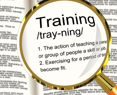 Image of Dictionary Definition of Training