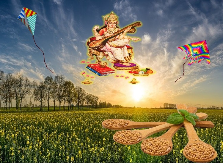 The festival of Vasant Panchami