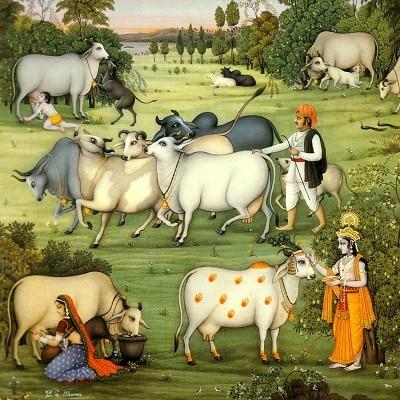 Krishna Govardhan puja
