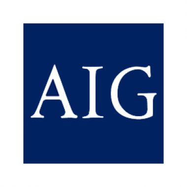 American International Group top insurance companies in the United States