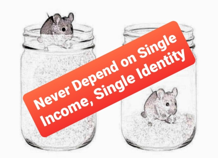 Never Depend on Single Income, Single Identity