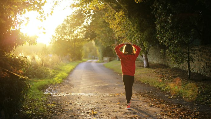Connection Between Good Mental Health and Physical Wellness