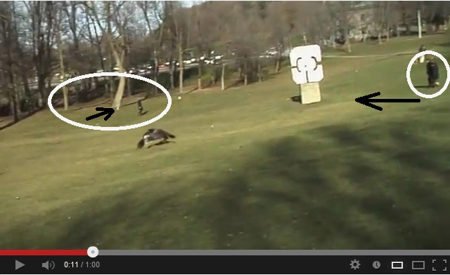 """One frame of the video """"Golden Eagle Snatches Kid"""" shows shadows in almost opposite directions"""
