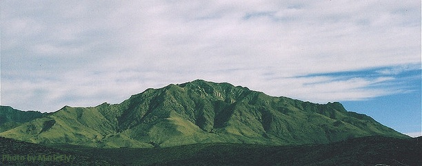 Green mountain in the area of Marfa in southwest Texas