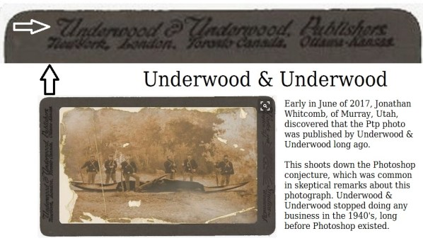 Ptp photograph of a modern pterosaur - with border