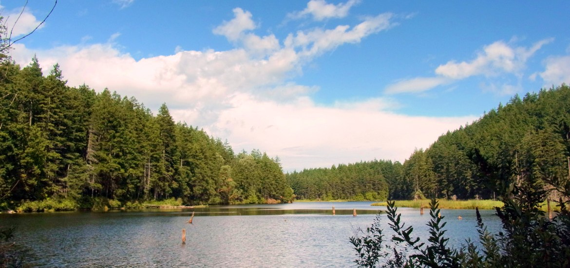 Cranberry Lake, Fidalgo Island: one of my favourite places to wander and relax - Live Recklessly
