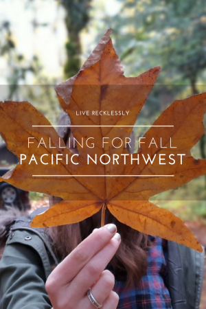 Exploring the best of fall in the Pacific Northwest, from hikes and camping to pumpkin picking and city getaways - and plenty of golden fall colours! Read more at www.liverecklessly.com