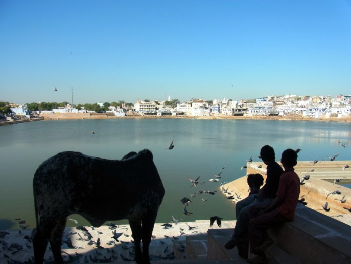 India in Photos: Views of Pushkar Lake, Rajasthan. Clearly everyone was impressed! - LiveRecklessly.com
