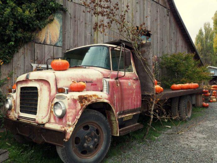 Halloween in Anacortes Washington - www.liverecklessly.com