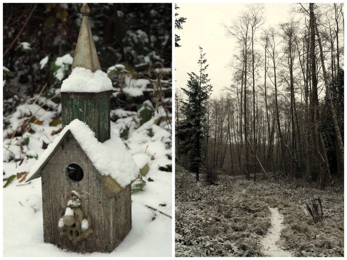 Snow in Anacortes - liverecklessly.com