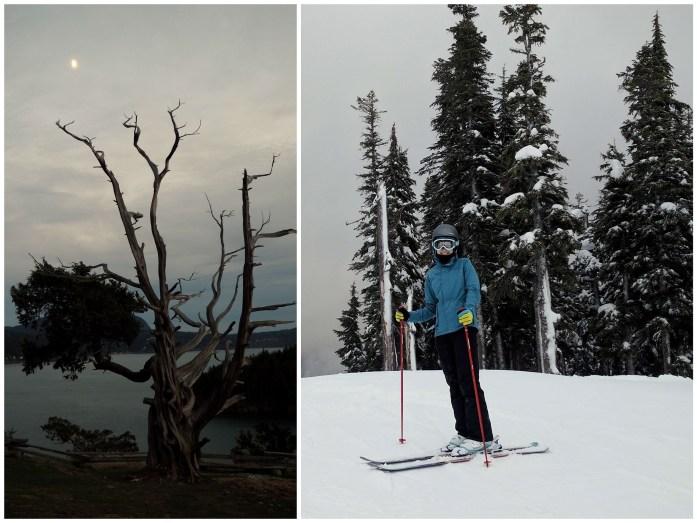 Expat Escapades December - snow in Anacortes Washington