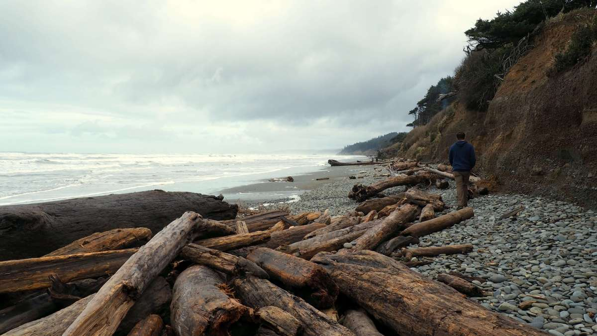 Olympic National Park road trip wild beaches driftwood