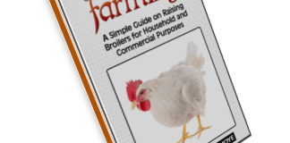 broiler farming ebook Guide