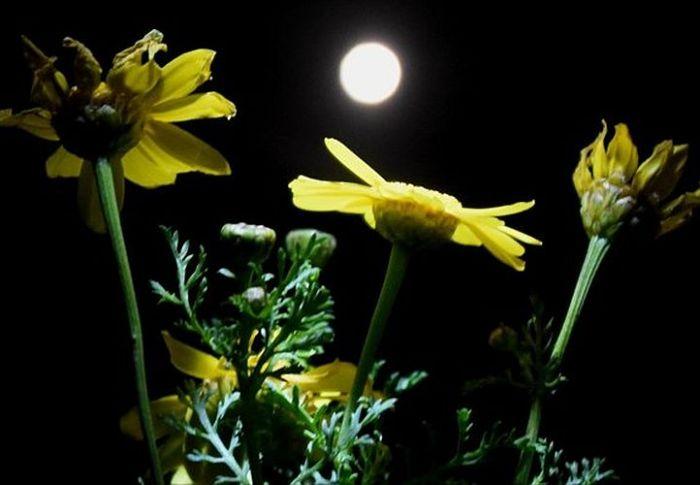 «Θλιμμένο» φεγγάρι: Δεύτερη πανσέληνος του Οκτωβρίου