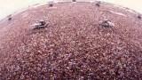 25 Χρόνια πριν, οι Metallica έπαιξαν μπροστά σε 1,5 Εκατομμύριο Κόσμο. Δείτε το σπάνιο Βίντεο της Συναυλίας!