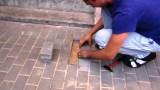 Ένας άνδρας άκουσε κλάματα να βγαίνουν από το έδαφος, ξεκόλλησε μερικά τούβλα από το πεζοδρόμιο και αντίκρισε κάτι απίστευτο!