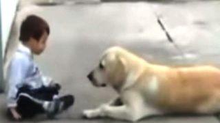 Σκύλος πλησιάζει παιδάκι με σύνδρομο Down και μας χαρίζει ένα από τα πιο συγκινητικά βίντεο όλων των εποχών