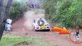 Απίστευτη στιγμή! Ένα Αγωνιστικό Αυτοκίνητο κάνει Άλμα πάνω από το Σκυλί την Τελευταία Στιγμή!