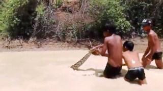Παιδιά τραβούν μεγάλο φίδι έξω από το νερό χωρίς να νοιάζεται κανείς για την ασφάλειά τους