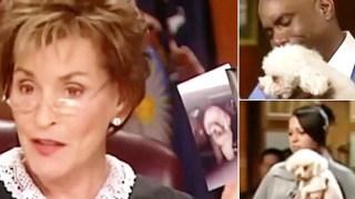 Δικαστής άφησε σκύλο ελεύθερο μέσα στο δικαστήριο για να διαλέξει τον αληθινό του ιδιοκτήτη