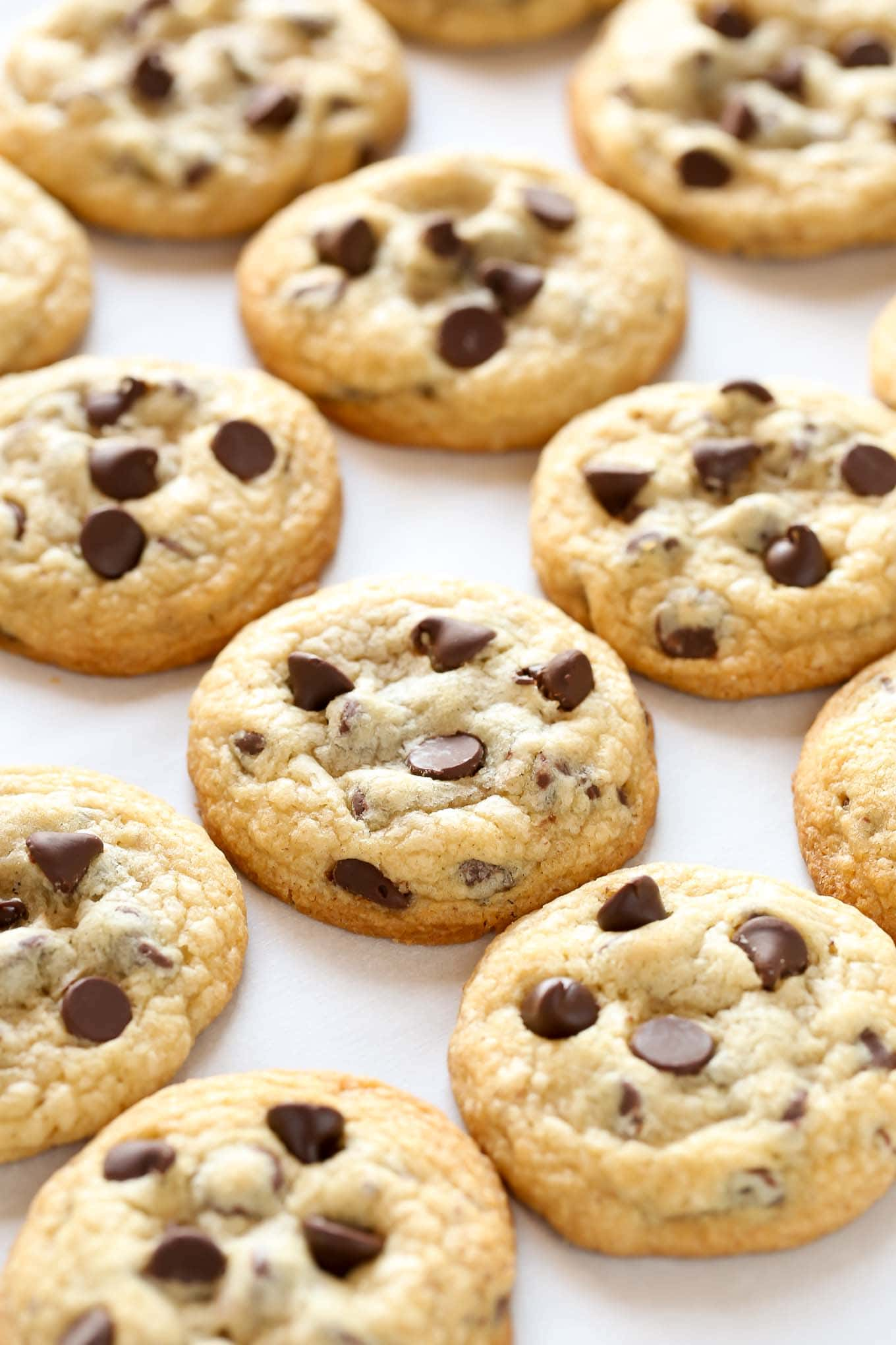 These chocolate chip cookies are extra soft, thick, and chewy. This is my FAVORITE recipe for chocolate chips cookies and they turn out perfect every time!