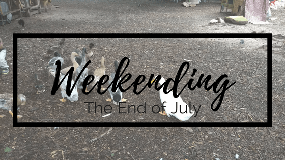 Weekending: The End of July