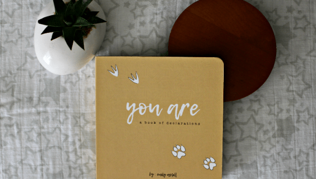 "Speaking Life to Our Children: ""You Are: A Book of Declarations"" Review & Giveaway"
