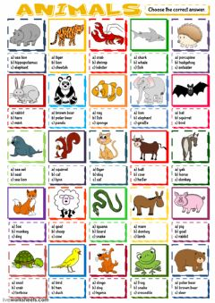 English Exercises Conditionals Multiple Choice