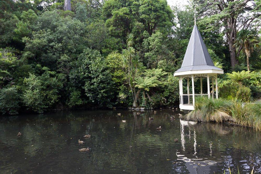 wellington-botanic-gardens-duck-pond-2