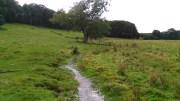Site of Mediaeval Village of Biscathorpe